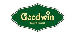 goodvin
